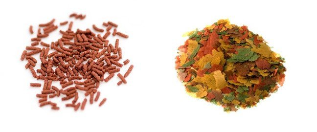 A pile of goldfish pellets next to a pile of goldfish flakes on white background