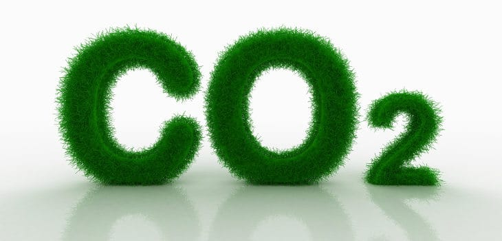 CO2 written in algae, isolated on white with a reflective shadow underneath