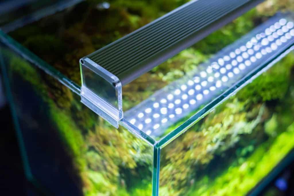 Top view of an aquarium hood showing an LED lighting strip