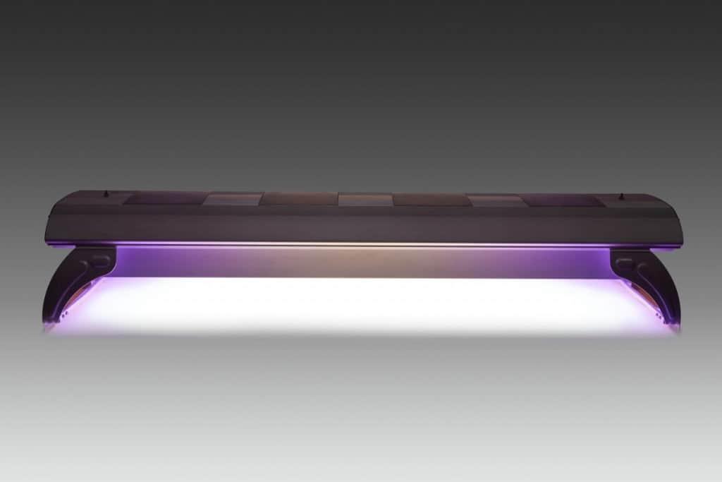 aquarium LED lighting on a dark background to show the illumination it creates