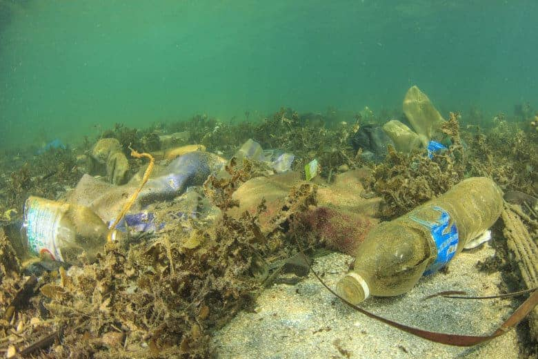 Plastic waste piling up on the sea bed