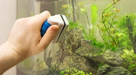 A mans hand using a magnetic aquarium glass cleaner