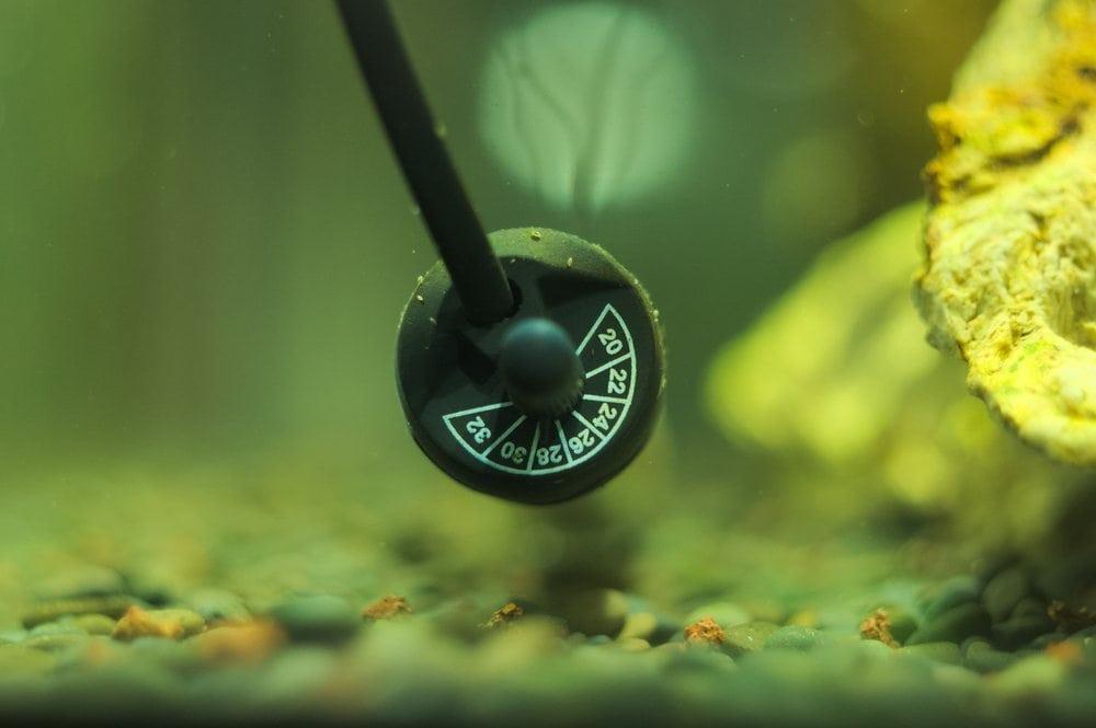 aquarium-heater
