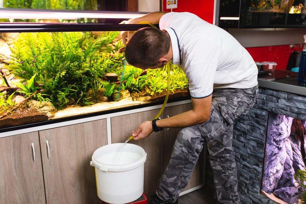 changing-aquarium-tank-water