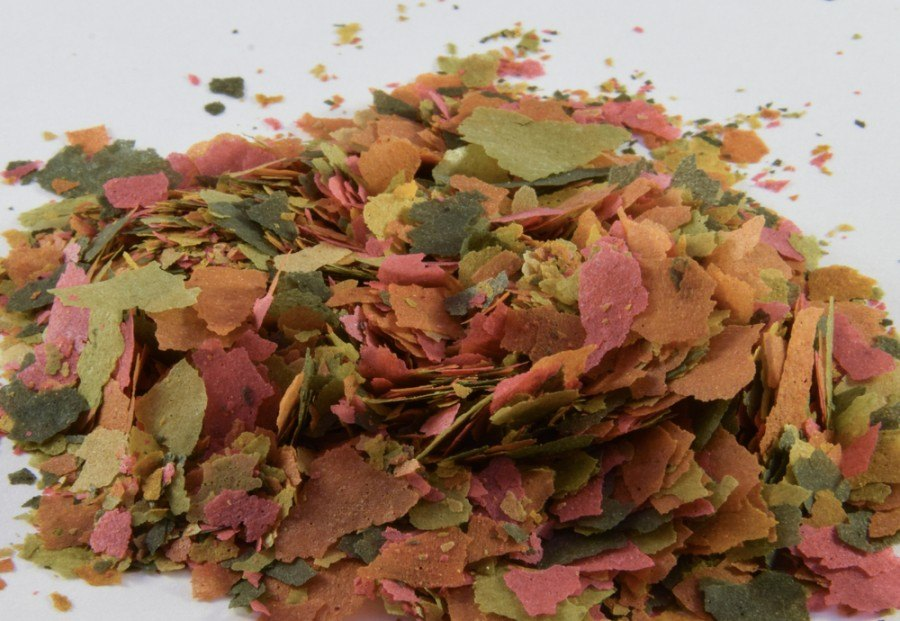 fish food flakes for tropical fish