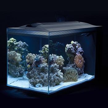Fluval Sea Evo V Saltwater Fish Tank Aquarium Kit feat