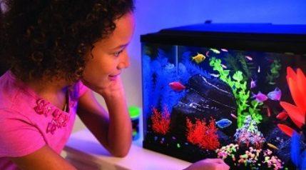 GloFish Aquarium Kit Fish Tank with LED feat