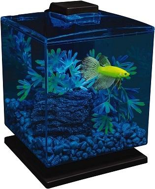 GloFish Aquarium Kit w Hood