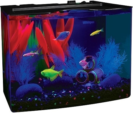GloFish Aquarium Kit wHood