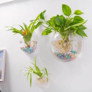 Outgeek Wall Fish Bubble Wall Hanging Bowl Clear Acrylic Vase Flower Plant Pot Aquarium_Amazon