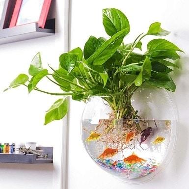 Outgeek Wall Fish Bubble Wall Hanging Bowl