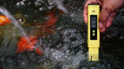PH checking solution in aquarium tank