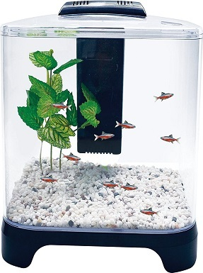 Penn Plax Betta Fish Tank Aquarium Kit with LED