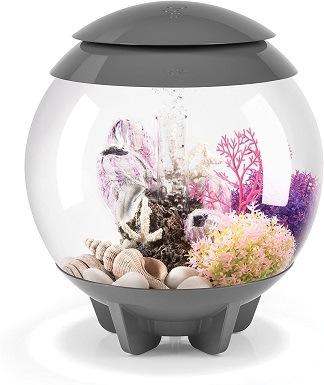 biOrb Halo Aquarium