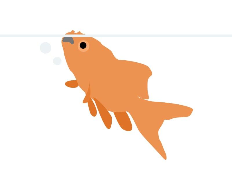 goldfishgasping
