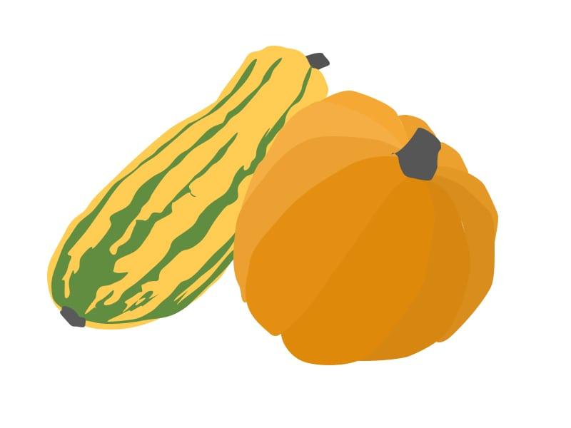 pumpkin-squash