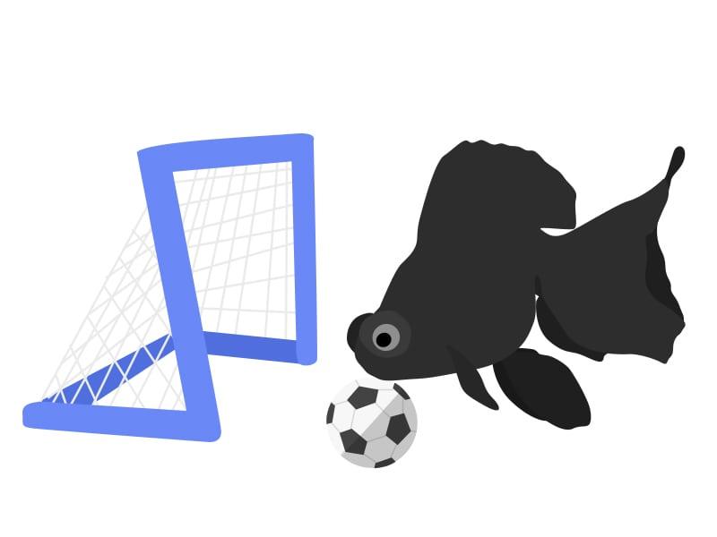 soccer-goldfish