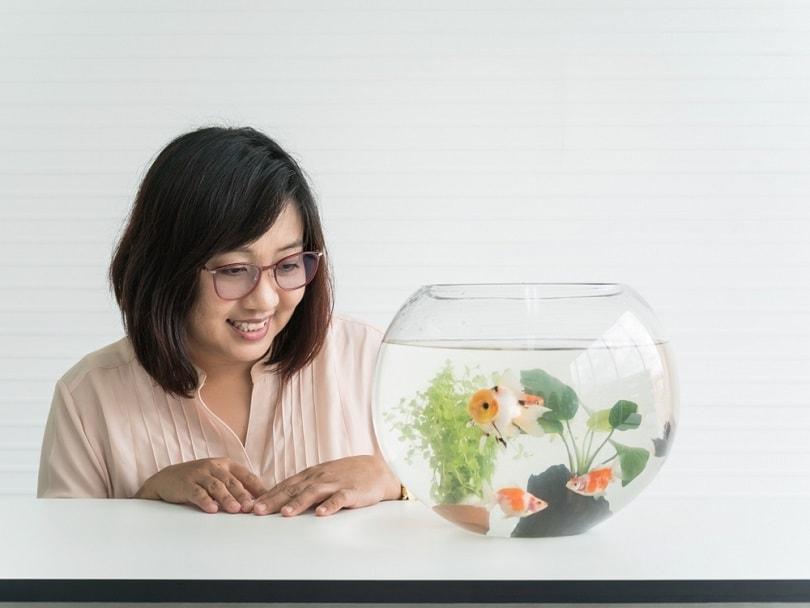 woman-watching-goldfish-in-bowl_pritsana_shutterstock