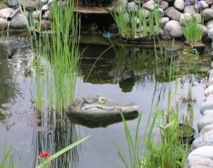 Geniff Floating Alligator Head