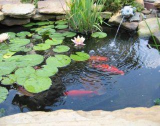 UWIOFF 10' x 13' Pond Liner